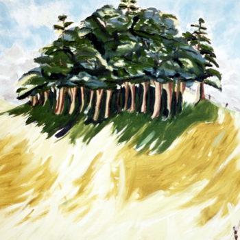 Rainforest At Rosebank