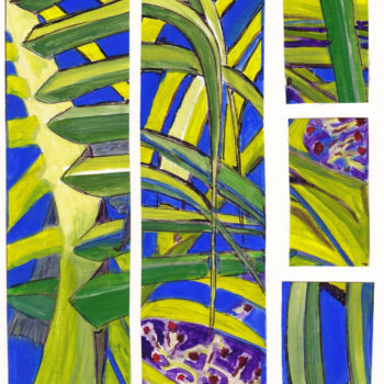 Honeyeater In The Bangalow Palms