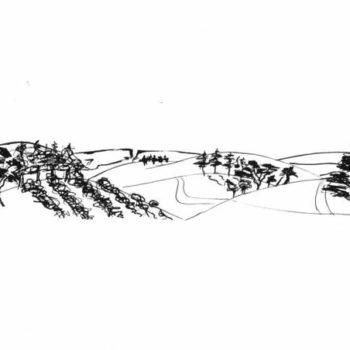 Eureka Landscape II