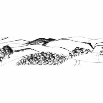 Eureka Landscape IV